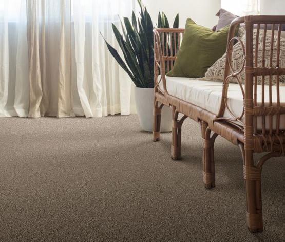 Tuftex Hudson Falls ZZ014_00753 Room.jpg