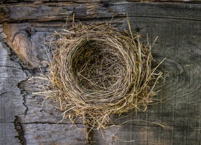 Top 21 Empty Nest Things To Do