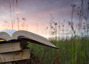 The Summer 2020 Book List