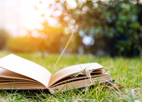 The Reading Lists - Not Just for Summer