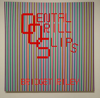 DDS-Bridget Riley COVER WEB.jpg