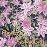 cover-flowers.jpg