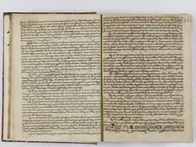 Disputationes in Animasticam, Juan de Puga S. J., 1710