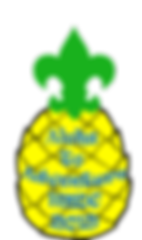 pineapplelogo.png
