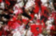 Red Wall Series Masterpiece ii WEB.jpg