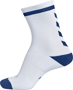 Elite indoor socks low.jpg