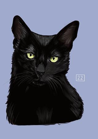 Pet Portrait Chest Up