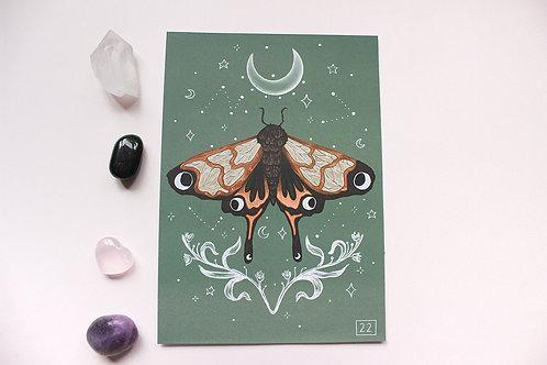 Mystic Moth Print
