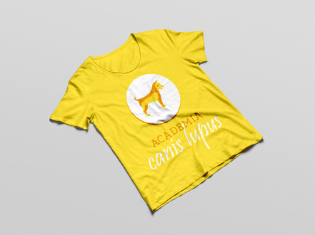 camiseta_masculina_jc.png