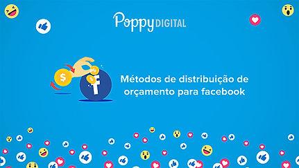Métodos_de_distribuição_de_orçamento_par