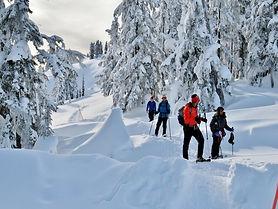 Snowshoe-Tour_Thumb.jpg