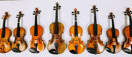 photo all violins.jpg