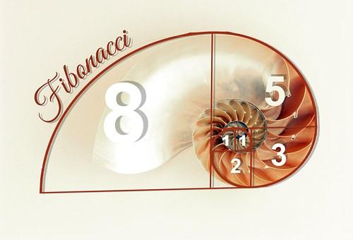 Fibonacci, Sea-life & Me