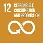 E_SDG goals_icons-individual-rgb-12-150p