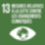 F_SDG goals_icons-individual-rgb-13.png