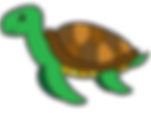 final turtle color.png