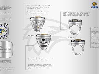 WCE - Ring Story