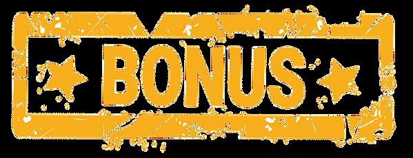 Bonus-vector.png