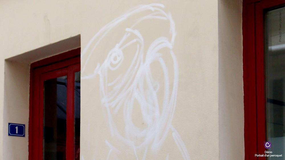 croquis à l'aérosol de perroquet sur mur à Paris, hostel Montclair Montmartre