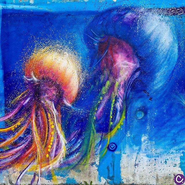 meduses_vouziers_edited.jpg
