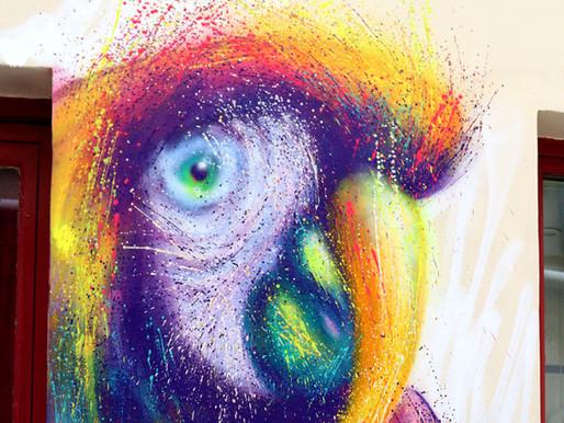Réaliser un portrait de perroquet à l'aérosol