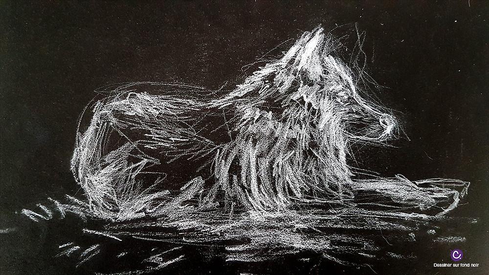 Astuce 2 pour dessiner sur fond noir - Dessin d'un loup arctique blanc sur fond noir