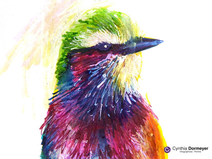 Zoom - dessin du plumage blanc