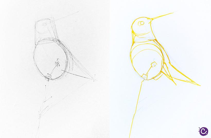 Etape 1 : dessinez les formes principales