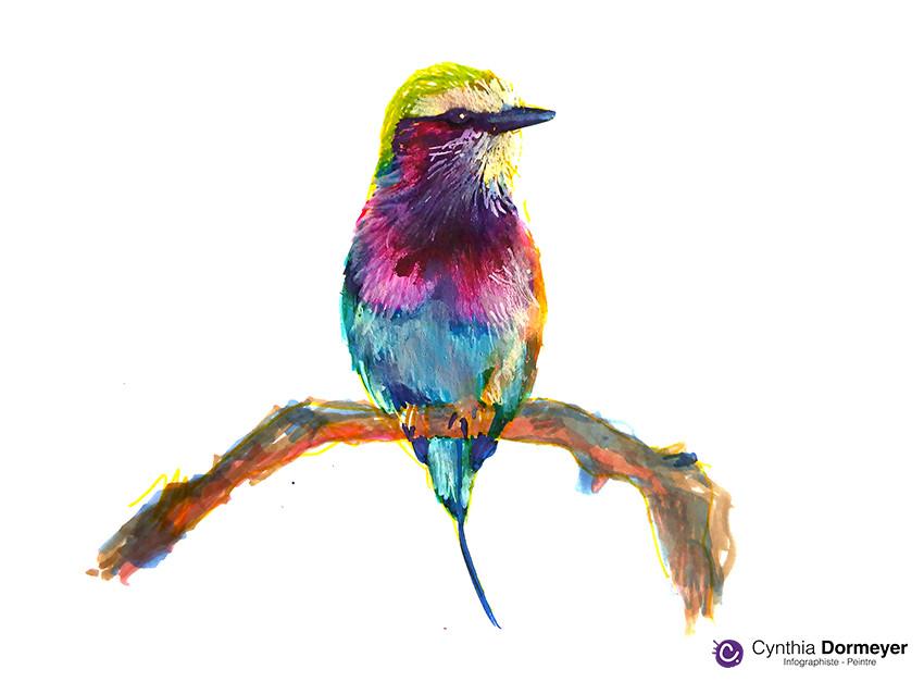 Ajout de détail sur l'oiseau