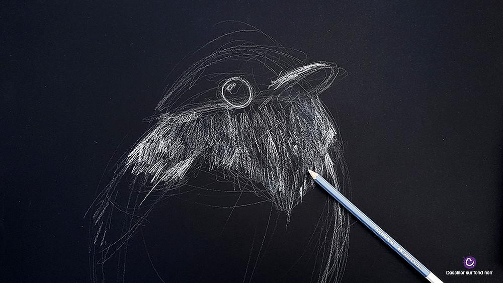 Astuce 1 pour dessiner sur fond noir - Dessin d'oiseau blanc sur fond noir