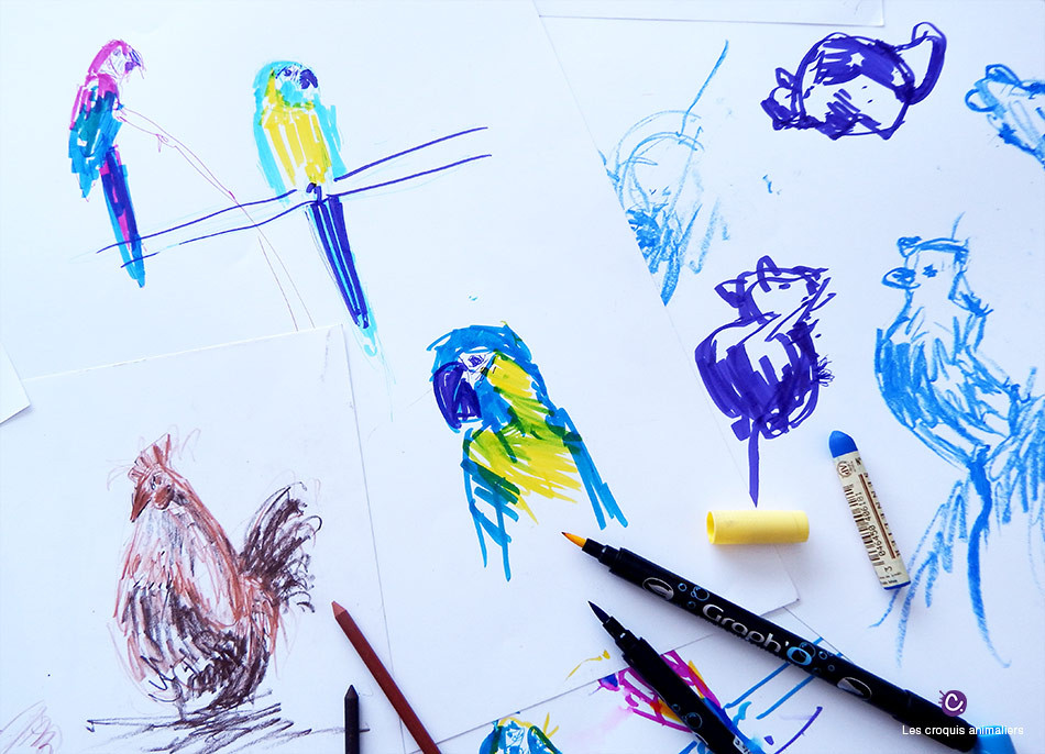 Croquis animaliers - Perroquets, souris