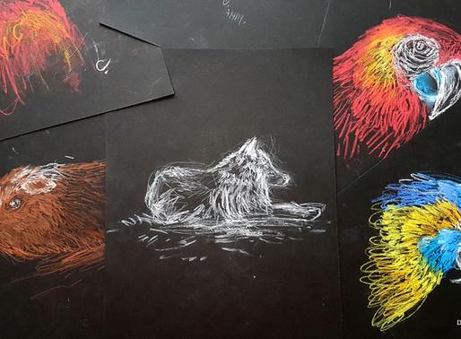 7 astuces pour dessiner sur fond noir