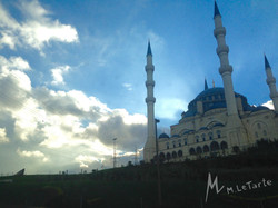 IMG_0049_murdocjax