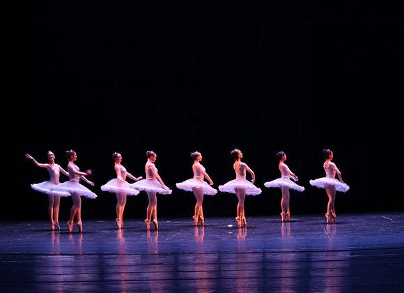 10-13 ans Ballet / Session Automne