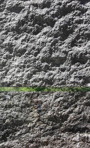 5 crop.jpg