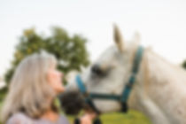 Horse2_websize.jpg