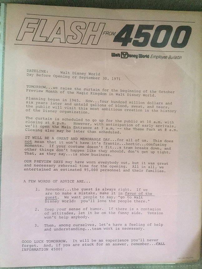 Flash4500.jpg