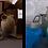 Thumbnail: carafe / water bottle blue