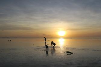 クック諸島はオールシーズンリゾート 年間気温データ