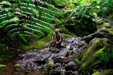 クック諸島の伝説&ヒーロー パさんは伝統治療師(ハーバリスト)