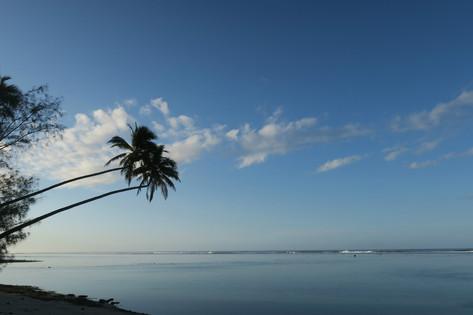 【旅の感想】ラロトンガ島1周マラソン夫婦ご参加