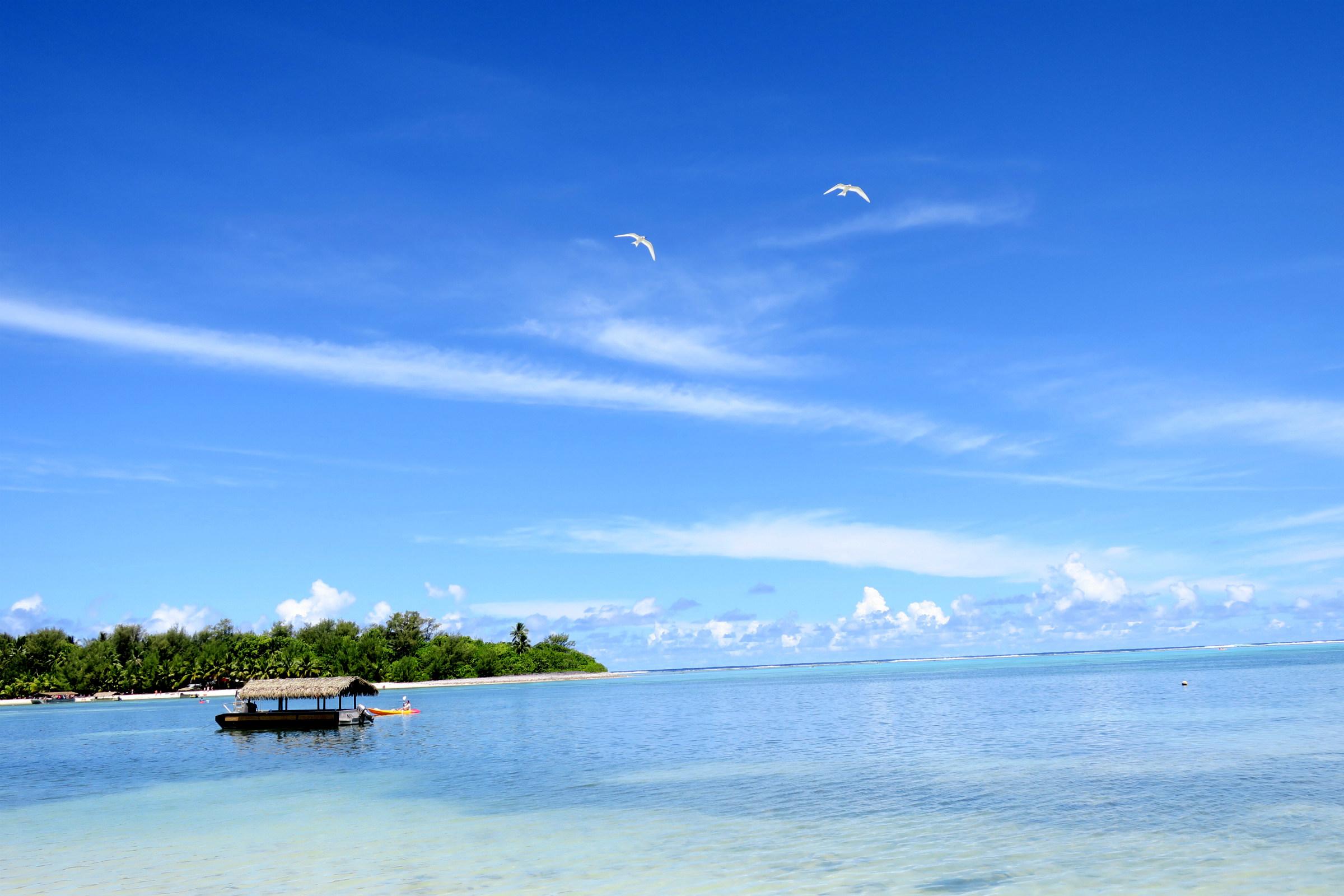 muri beach with white birds
