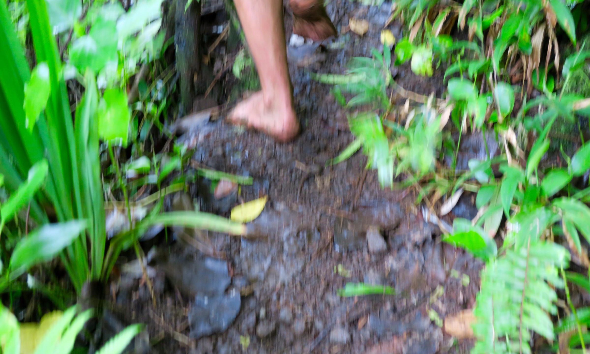 cross island trek bear foot local