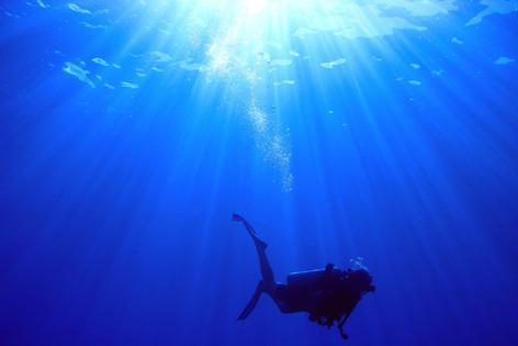 知られざるダイビングの秘境&楽園 クック諸島