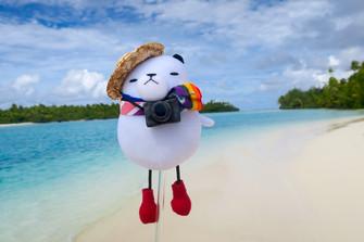 【テレビ放映】虹色ジーン クック諸島の家族&観光名所