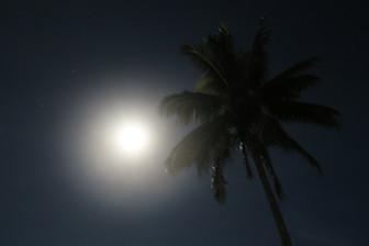 2月さようなら 美しい夜空を眺めるこの頃