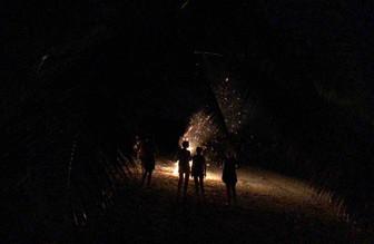 自ら望みクック諸島に立ち往生 コロナ禍のハッピー観光客