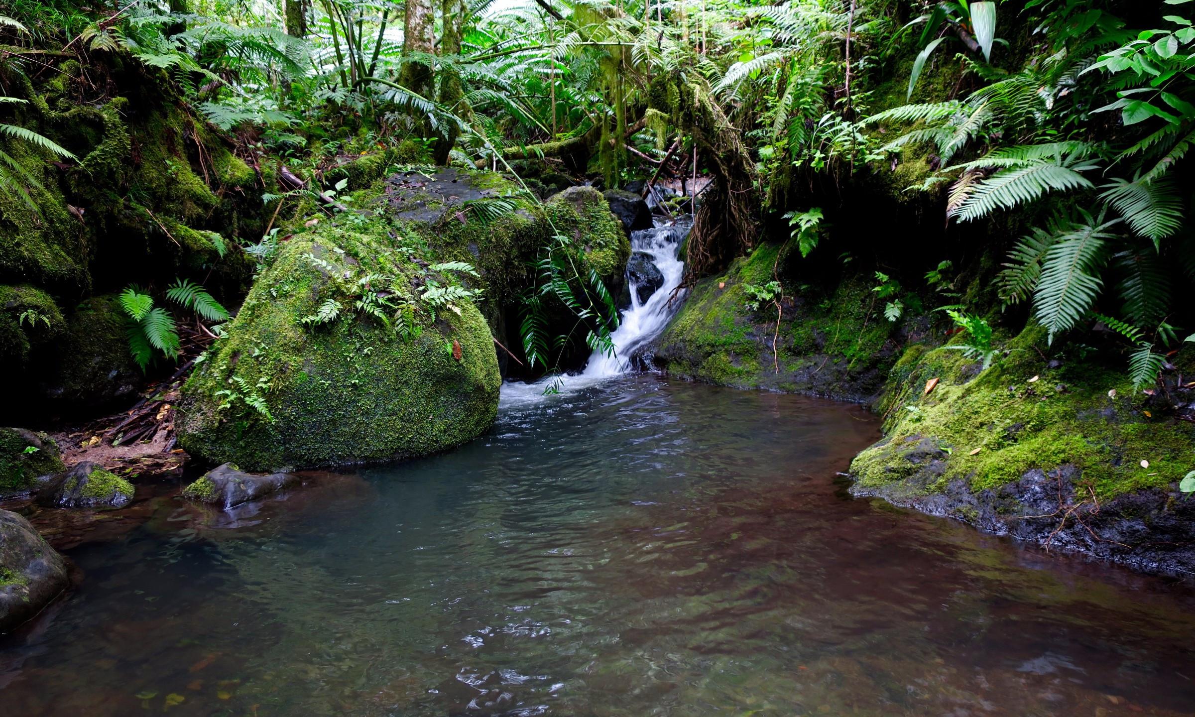 cross island trek river