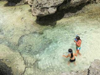 タヒチ経由クック諸島ツアーあります!
