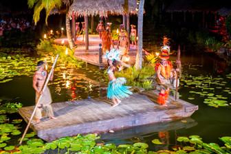 ポリネシアンダンスディナーショー